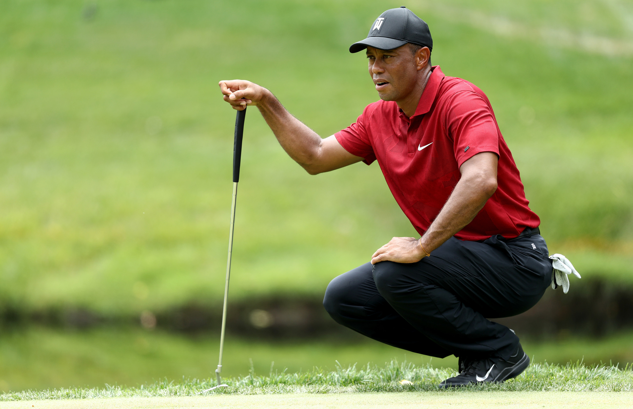 Tiger woods in golf shirt